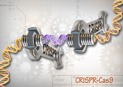 CRISPR – The Genome Engineering Revolution   Session Chair: Charles Gersbach, Duke