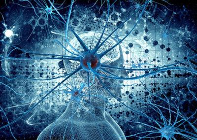 Automating Evidence-based Gene Panel Design   Session Chair: Mark Kiel, Genomenon, Inc.
